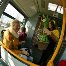 Radost v ulicích - bezva tramvaj_4