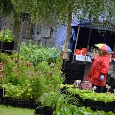 Letni Flora Olomouc_018