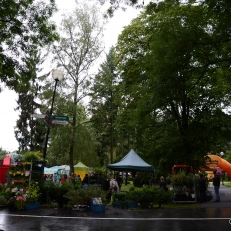 Letni Flora Olomouc_021