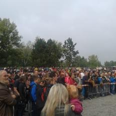 Festival_dřeva_19